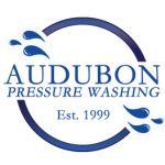 AudubonPressureWash